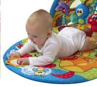 Playgro tapis de jeu/tunnel Puppy Playtime Tunnel Gym-Image 3