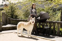 Mountain Buggy Wandelwagen Urban Jungle V3 Luxury collection herringbone-Afbeelding 3