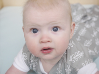 Ergopouch Inbakerzak ErgoCocoon 3 - 12 maanden grey fern-Artikeldetail