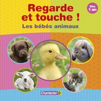 Regarde et touche ! : Les bébés animaux