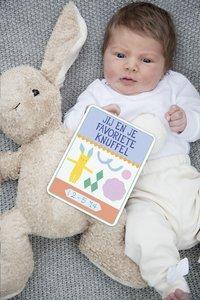 Milestone Pregnancy Cards NL-Image 1