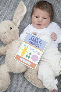 Milestone Pregnancy Cards-Afbeelding 1