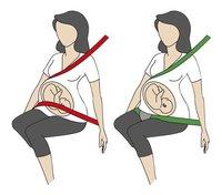 BeSafe Guide-ceinture-Détail de l'article