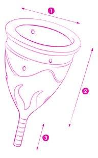 Femintimate Menstruatiecup Ève large-product 3d drawing