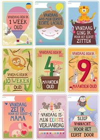Milestone Baby Cards NL-Détail de l'article