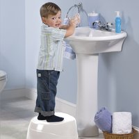 Summer Infant 3-in-1 potje Step-By-Step Potty-Afbeelding 1