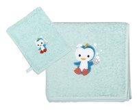 Dreambee Handdoek en washandje Niyu munt - 2 stuks