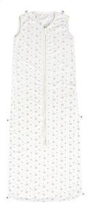 Dreambee Slaapzak 4 seizoenen Essentials sterretje katoen/polyester grijs 100 cm-Artikeldetail