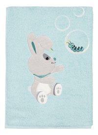 aa116b31712 Handdoeken en washandjes | Dreambaby