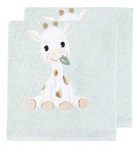 Dreambee Handdoek Tobi groen - 2 stuks-Vooraanzicht