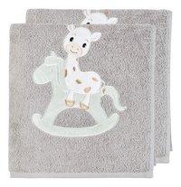 Dreambee Handdoek Tobi grijs B 50 x L 100 cm - 2 stuks-Vooraanzicht