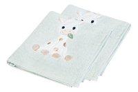 Dreambee Handdoek Tobi groen - 2 stuks-Rechterzijde