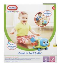 Little Tikes Lil' Ocean Explorers Crawl 'n Pop! Turtle-Arrière