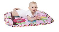 Bright Starts Tapis de jeu Charming Chirps Activity Gym-Image 3
