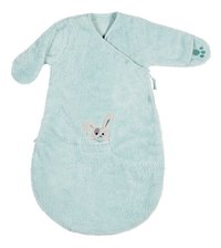 Dreambee Winterslaapzak Nino soft fleece munt 60 cm-Artikeldetail
