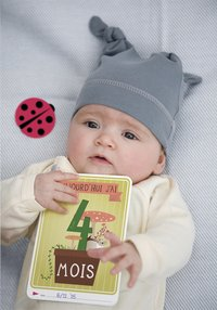 Milestone Pregnancy Cards FR-Afbeelding 2