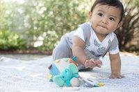 Infantino Hangspeeltje Go Gaga Playtime Pal Luchtballon-Afbeelding 5