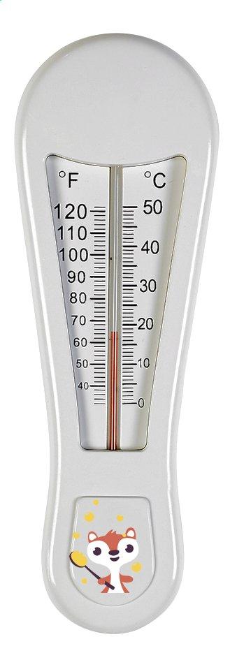 Image pour Dreambee Thermomètre de bain Ayko à partir de Dreambaby