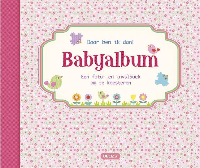 Image pour Babyalbum Daar ben ik dan! roze NL à partir de Dreambaby