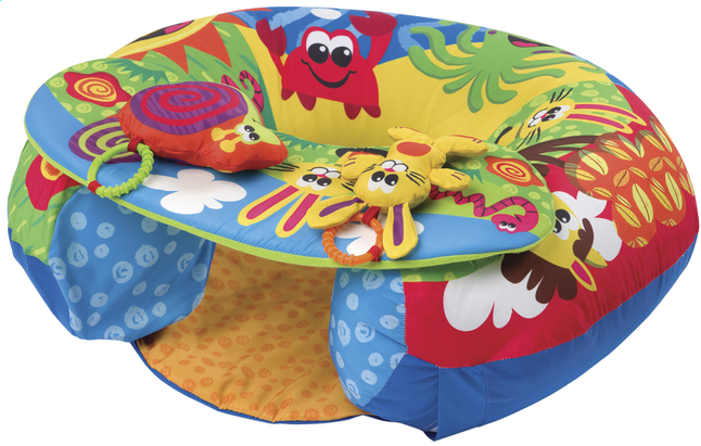Afbeelding van Playgro Speelcentrum Sit and Play from Dreambaby