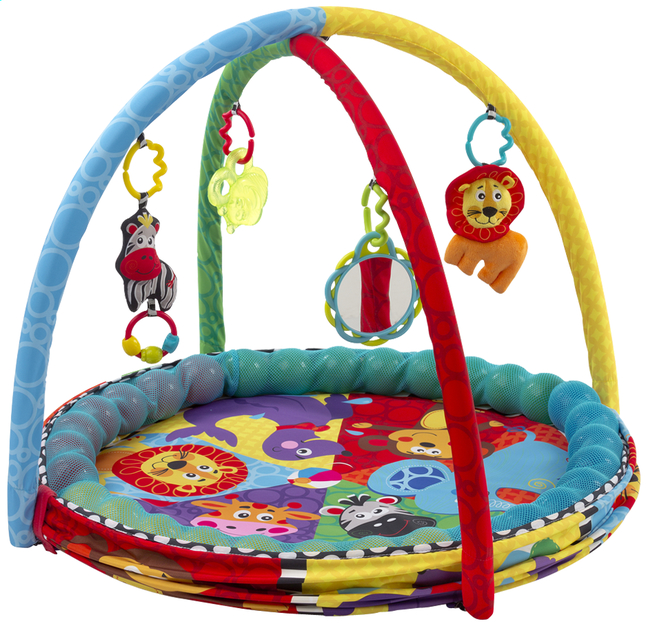 Image pour Playgro Tapis de jeu Ball Activity Nest à partir de Dreambaby