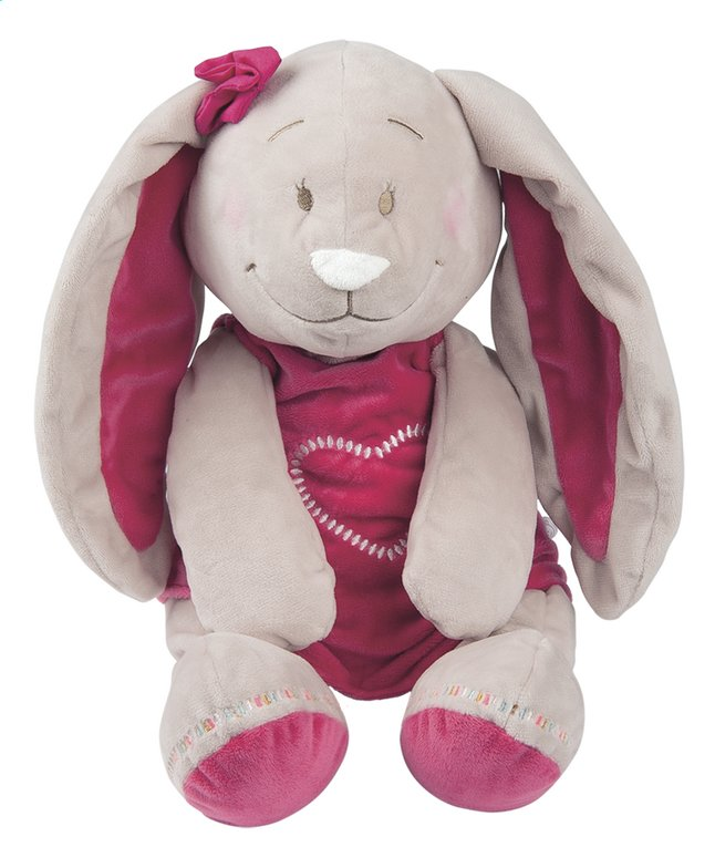 Afbeelding van Noukie's Knuffel Anna & Pili Pili 25 cm from Dreambaby