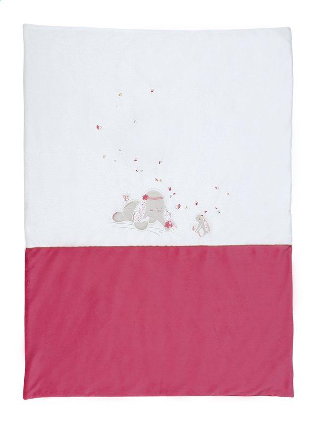 Afbeelding van Noukie's Deken voor wieg of park Anna & Pili polyester from Dreambaby