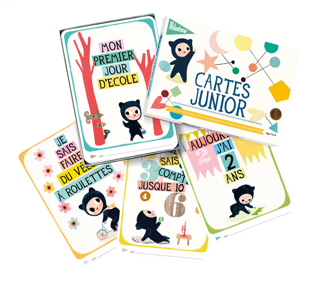 Afbeelding van Milestone Junior Cards FR from Dreambaby