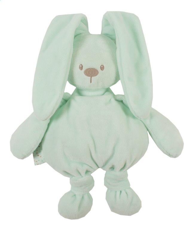 Image pour Nattou Peluche Lapidou vert menthe 36 cm à partir de Dreambaby