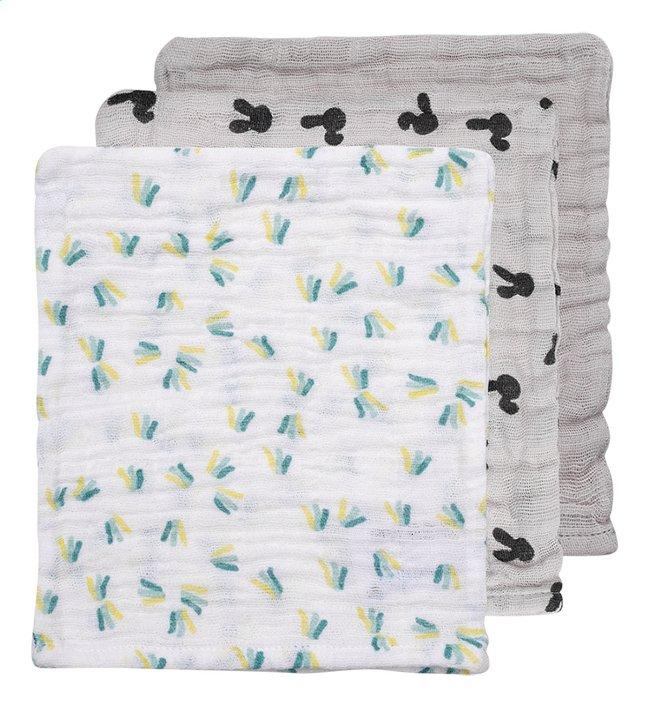 Dreambee Gant de toilette Nino gris/blanc - 3 pièces