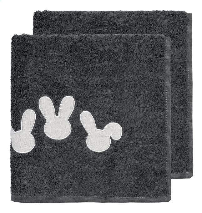 Image pour Dreambee Serviette Nino gris Lg 50 x L 100 cm - 2 pièces à partir de Dreambaby